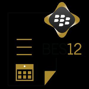 BlackBerry Lizenzen